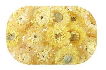 KOCANKA SUSZONA MIX BLADOŻÓŁTY (suchołuska, nieśmiertelnik, Helichrysum) kwiaty suszone suszki dekoracyjne