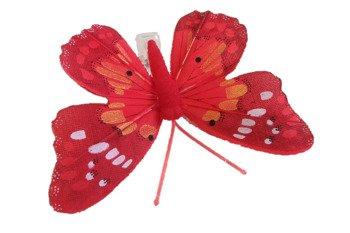 Motyl dekoracyjny na zapince kolor czerwony