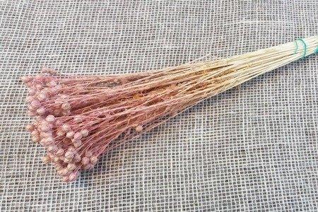 LEN KOLOR KREMOWORÓŻOWY suszony barwiony pęczek 50 cm