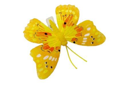 Motyl dekoracyjny na zapince kolor żółty