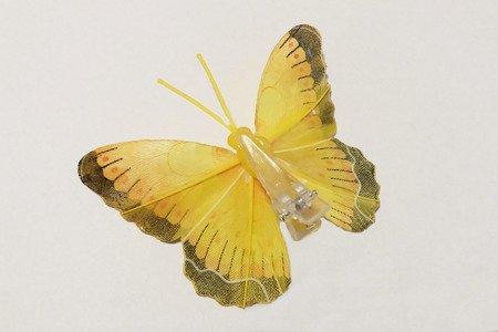 Motyl dekoracyjny na zapince kolor żółty z czarnym obrzeżem