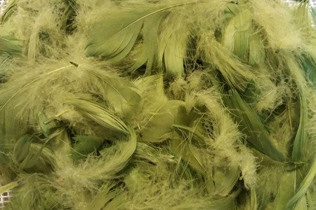 Piórka dekoracyjne kolor zielony (oliwkowy) opakowanie foliowe