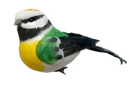 Ptaszek dekoracyjny zielony z pomarańczowym łebkiem
