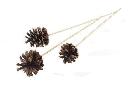 SZYSZKI SOSNOWE NATURALNE brązowe na patykach zestaw 20 sztuk