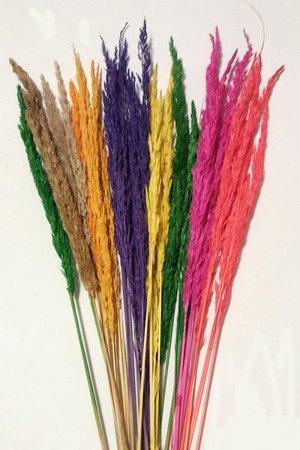 TRAWA LEŚNA MIX KOLORÓW trawa suszona barwiona zestaw wielobarwny